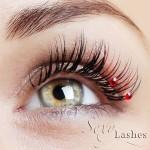 sexy lashes predlžovanie miahlíc trnava | creation-business.eu